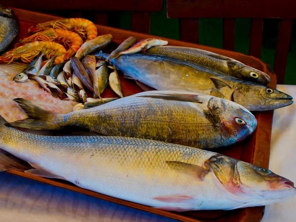 Aliments Interdits aux Chiens - Poisson Cru