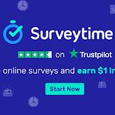 Berburu Dollar Melalui Survey Online di Surveytime