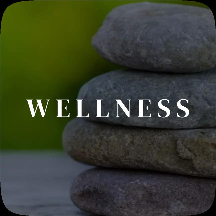 Wellness | HealthInsta