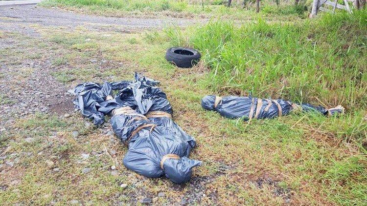 Fotos, Dejan tres sujetos ejecutados y embolsados abandonados en carretera costera de Veracruz