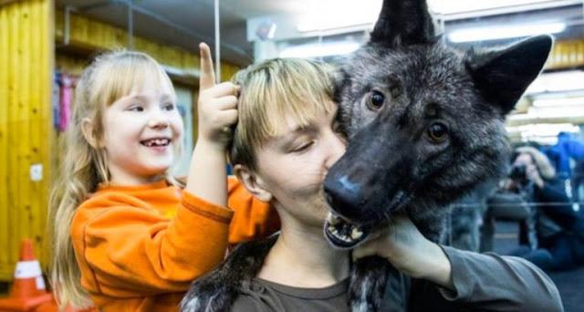 Редкая история дружбы между ребенком и диким зверюгой!