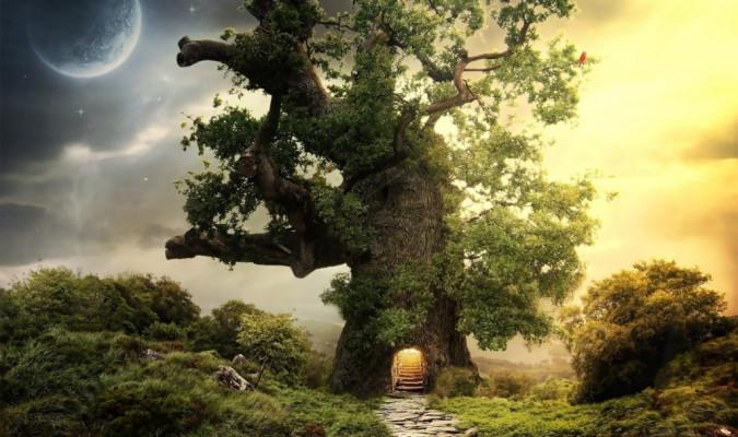 Câu chuyện cậu bé và cây cổ thụ cho thấy ý nghĩa nhân sinh