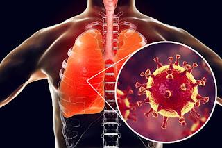 Saúde: Fiquem sabendo tudo sobre o novo coronavírus