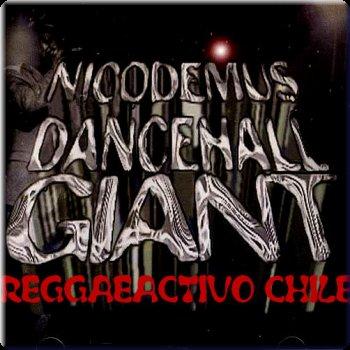 Reggae 12 Inch Blogspot