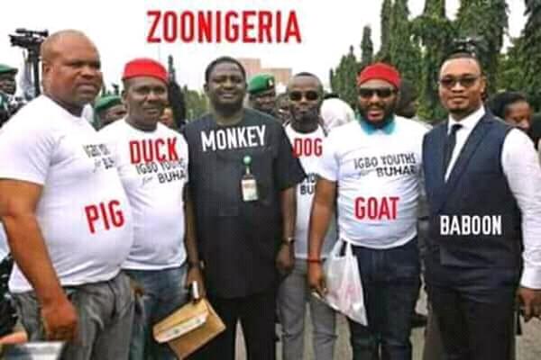 Biafra: Desperate Abia politician behind plot to re-arrest Nnamdi Kanu