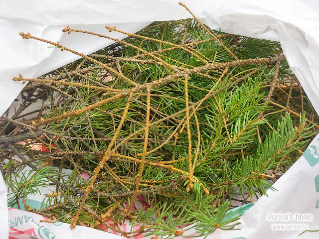 Срежьте ветки елки перед выбрасыванием