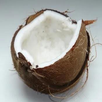 नारळ, coconut vegetables name in Marathi