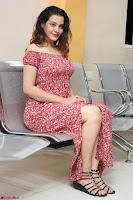 Diksha Panth in a Deep neck Short dress at Maya Mall pre release function ~ Celebrities Exclusive Galleries 116.JPG