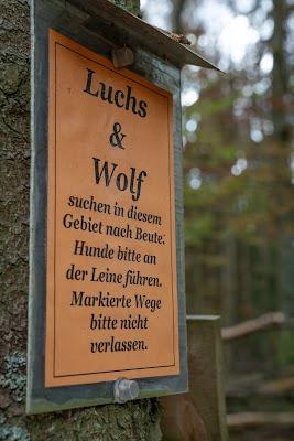 Kaitersberg Panoramaweg Ar06 | Wandern im Lamer Winkel im Bayerischen Wald 15