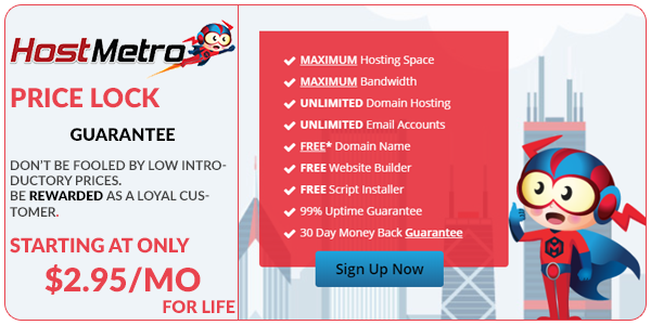 HostMetro provides cpanel web hosting for individuals and businesses. Get affordable web hosting for your website.