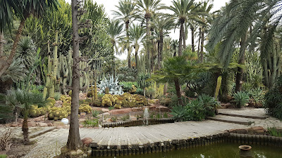 the cacti gardens at Elche Gardens - The Huerto del Cura