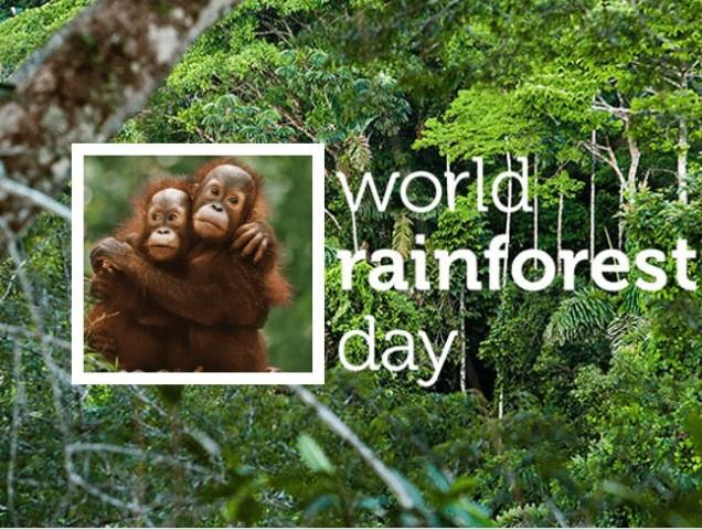 Παγκόσμια Ημέρα Τροπικών Δασών