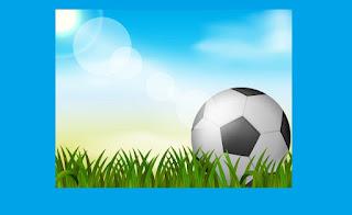 اتحاد الكرة السعودي يلزم الأنديه بشيء هام professional league