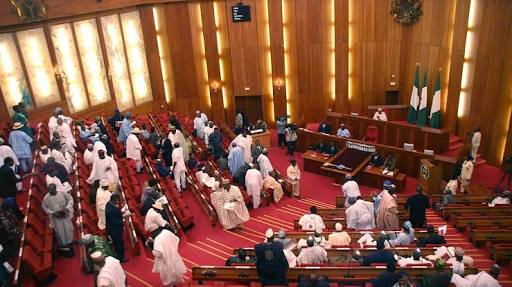 Senate Caucus Sacks Pro-Buhari Senator, Replaces Him
