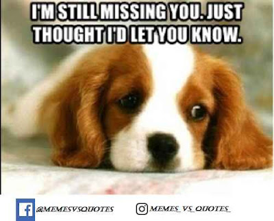 I'm still missing