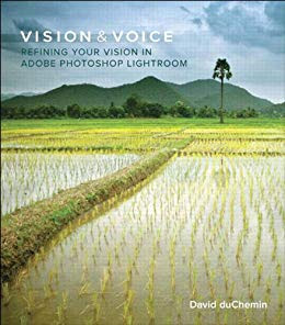 Vision and Voice by David du Chemin