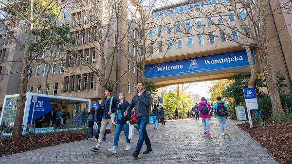 Top 10 Best Universities In Australia for International Students