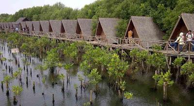 Lokasi Taman Wisata Alam Mangrove PIK Angke Kapuk Jakarta Utara