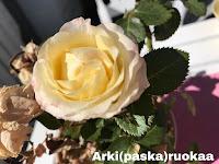 https://www.facebook.com/arkipaskaruokaa/