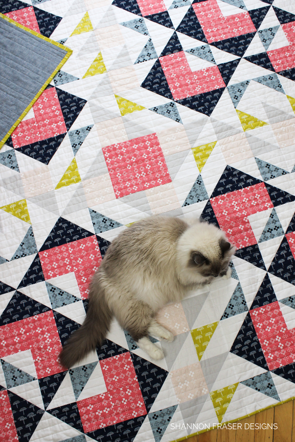 Pips snoozing on the Double Windmill Quilt | Shannon Fraser Designs #pipsonquilts #quilts #catsonquilts #cats #ragdolls