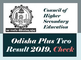 Odisha +2 Result 2019, CHSE +2 Result 2019, Odisha HSE Result 2019, Odisha 12th Results 2019