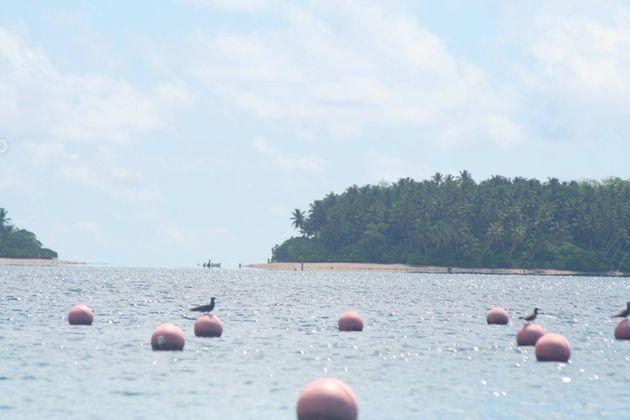 ο νησί της αχρωματοψίας