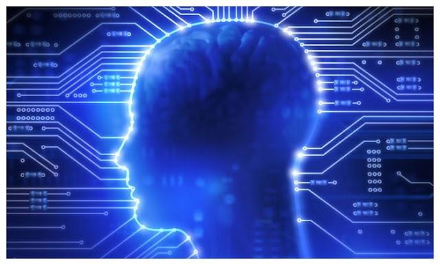 Η προέλευση της γλωσσικής πορείας στον εγκέφαλο χρονολογείται από 25 εκατομμύρια χρόνια