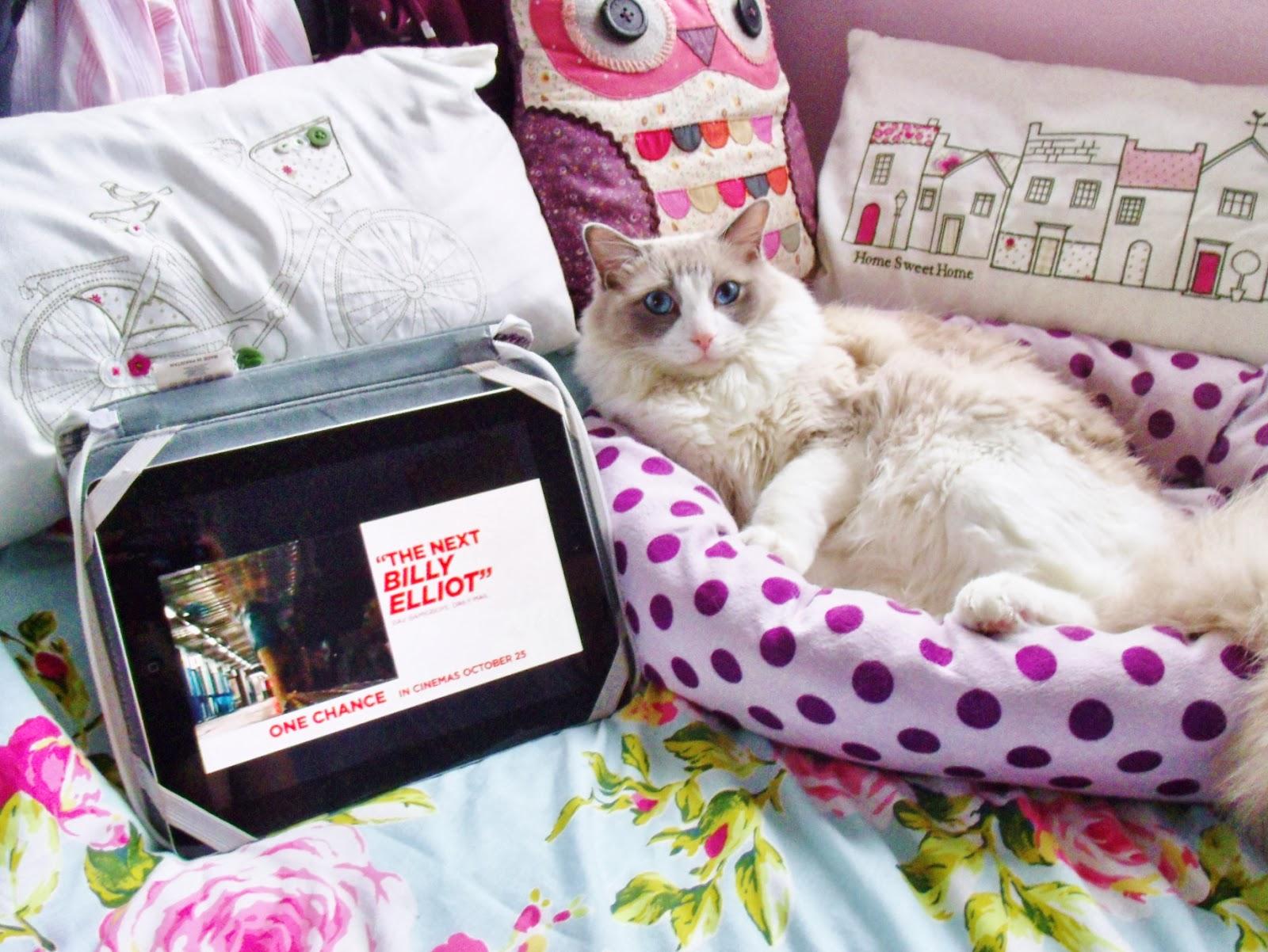 Lazy Weekend & Merlin Update ♥   Victoria's Vintage Blog
