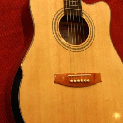 Đàn Guitar Acoustic HD300v