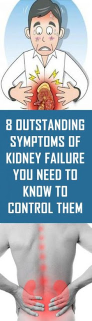 8 Outstanding Symptoms Of Kidney Failure You Need To Know To Control Them