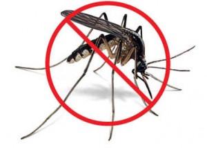 Obat Nyamuk Berbahaya