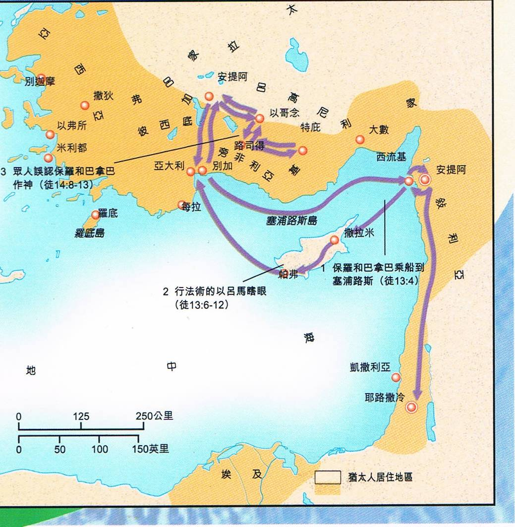 niv study bible 中文 版