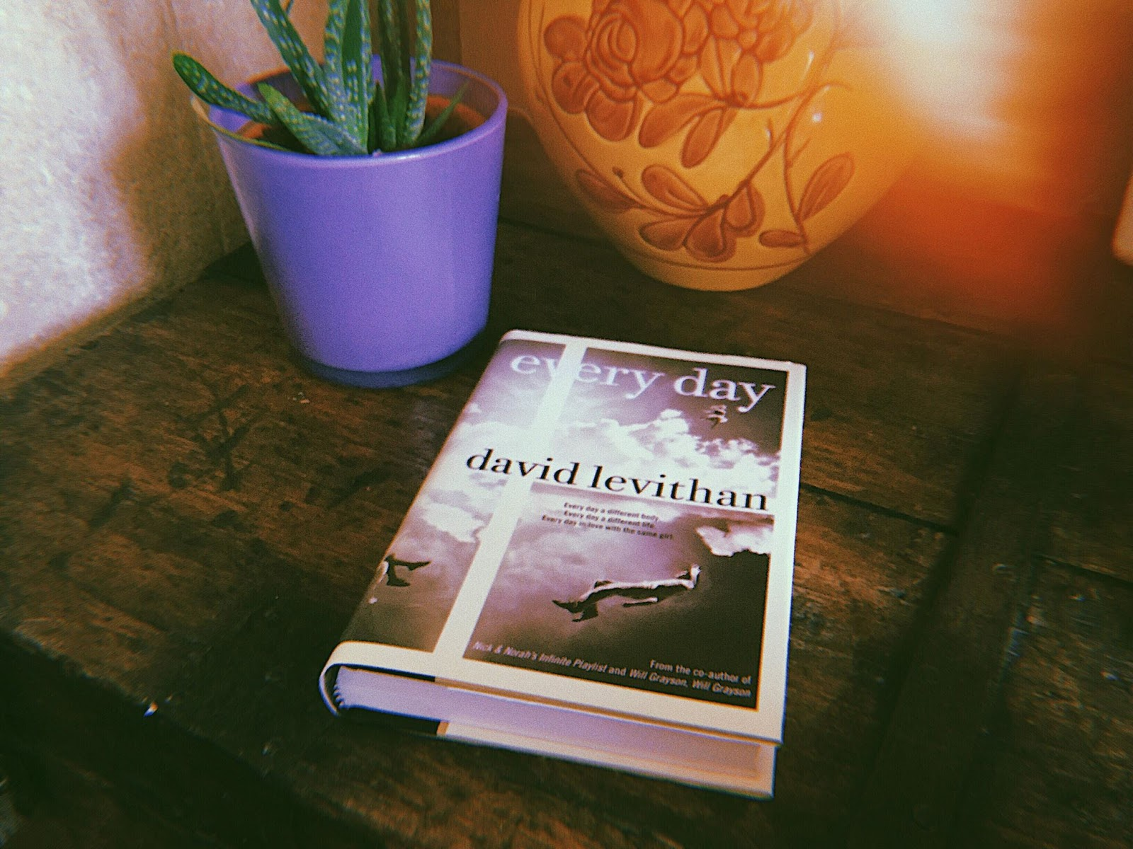 Every Day David Levithan novel
