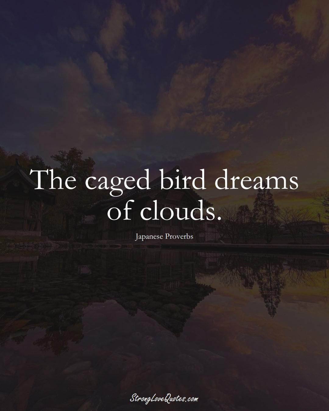 The caged bird dreams of clouds. (Japanese Sayings);  #AsianSayings