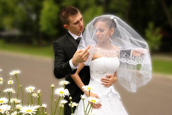 Lecturas para el día de la boda: El conejo de peluche