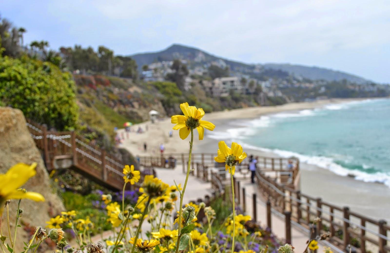Mash Elle beauty blogger travels to Laguna Beach | what to do in Laguna beach | California travel | trip to California | Laguna Hills