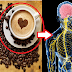 A Cup Of Coffee A Day Can Help Protect Against Cancer And Other Diseases