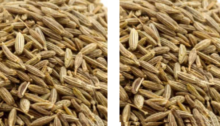 Cumin / Jeera  meaning in hindi, Spanish, tamil, telugu, marathi, kannada, malayalam name, gujarati, in marathi, indian name, tamil, english, other names called as, translation
