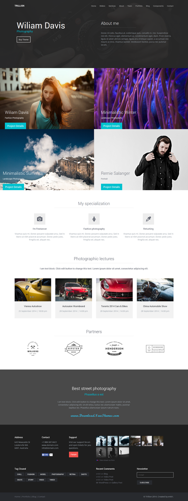 TRILLION Premium Multipurpose WordPress Theme