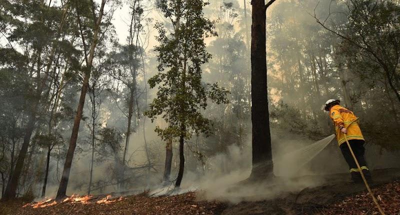 Australia pide a turistas animarse a visitar el país a pesar de arrasadores incendios forestales