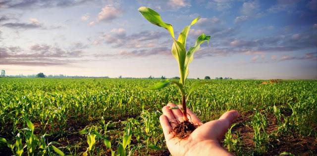 Poljoprivrednicima na raspolaganju 20 miliona eura
