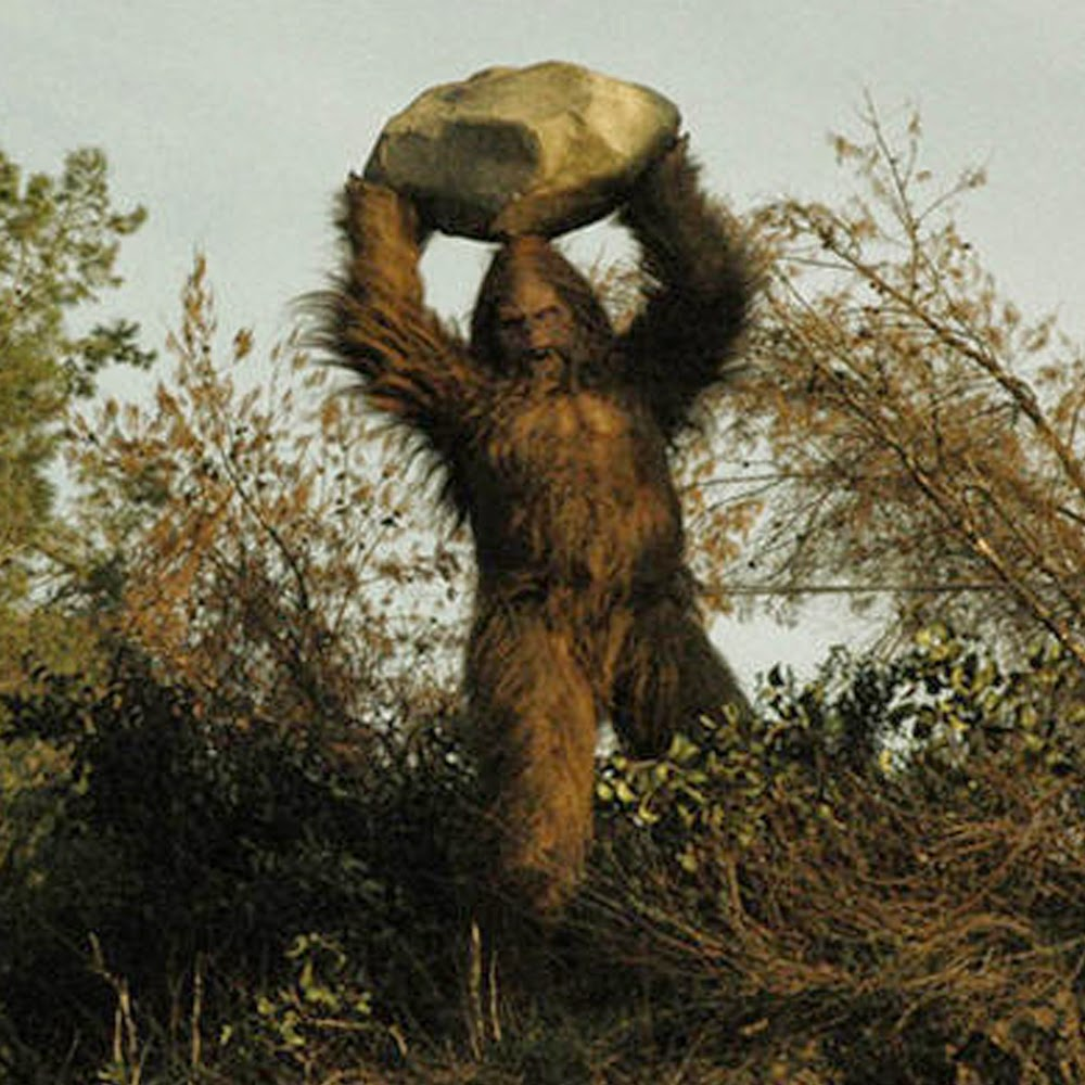 Bigfoot News Bigfoot Lunch Club Yahoo Answers If Bigfoot Was