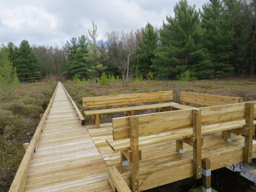 boardwalk through a marsh