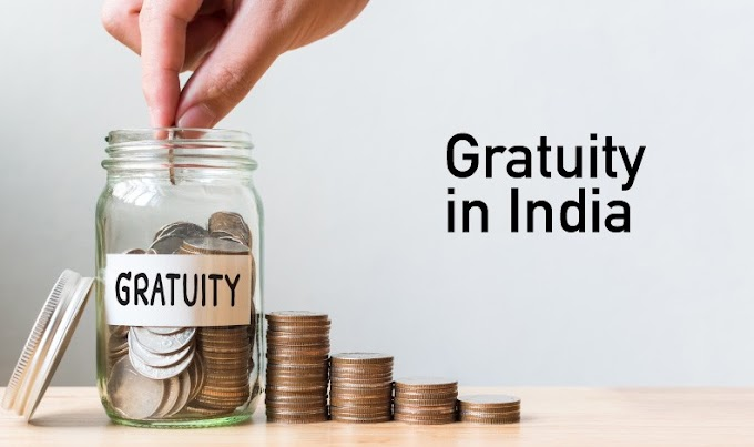 Gratuity Calculator: How to Use Gratuity Calculator to Calculate gratuity amount.