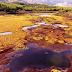 Λίμνη Καλοδίκη:Η πολύχρωμη λίμνη με τα  νούφαρα ..  και η καταστροφή της [βίντεο]