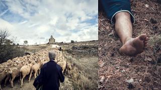 الڨصرين: راعي أغنام يعثر على الجثة بشرية في الجبل