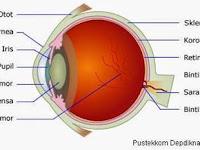 Makalah Tentang Alat - Alat Optik Lengkap