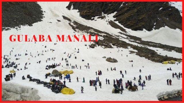 गुलाबा-मनाली-Gulaba-Manali