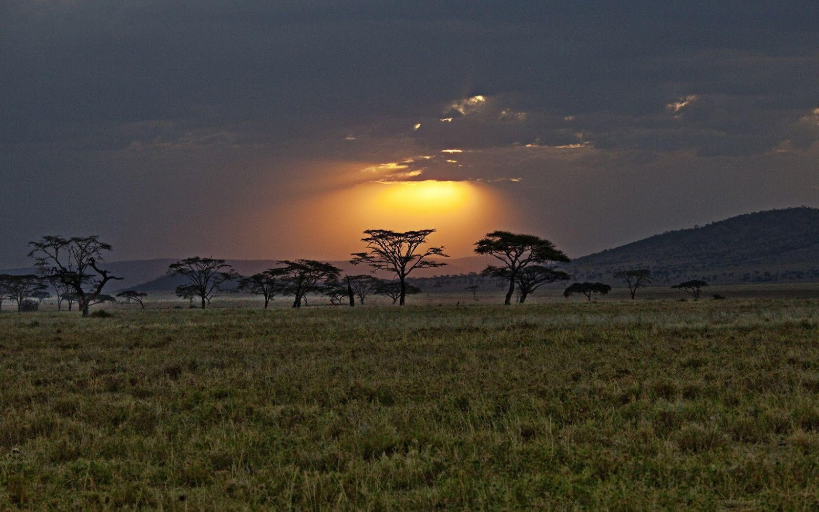 Sunset kenya africa Wallpapers HD wallpapers