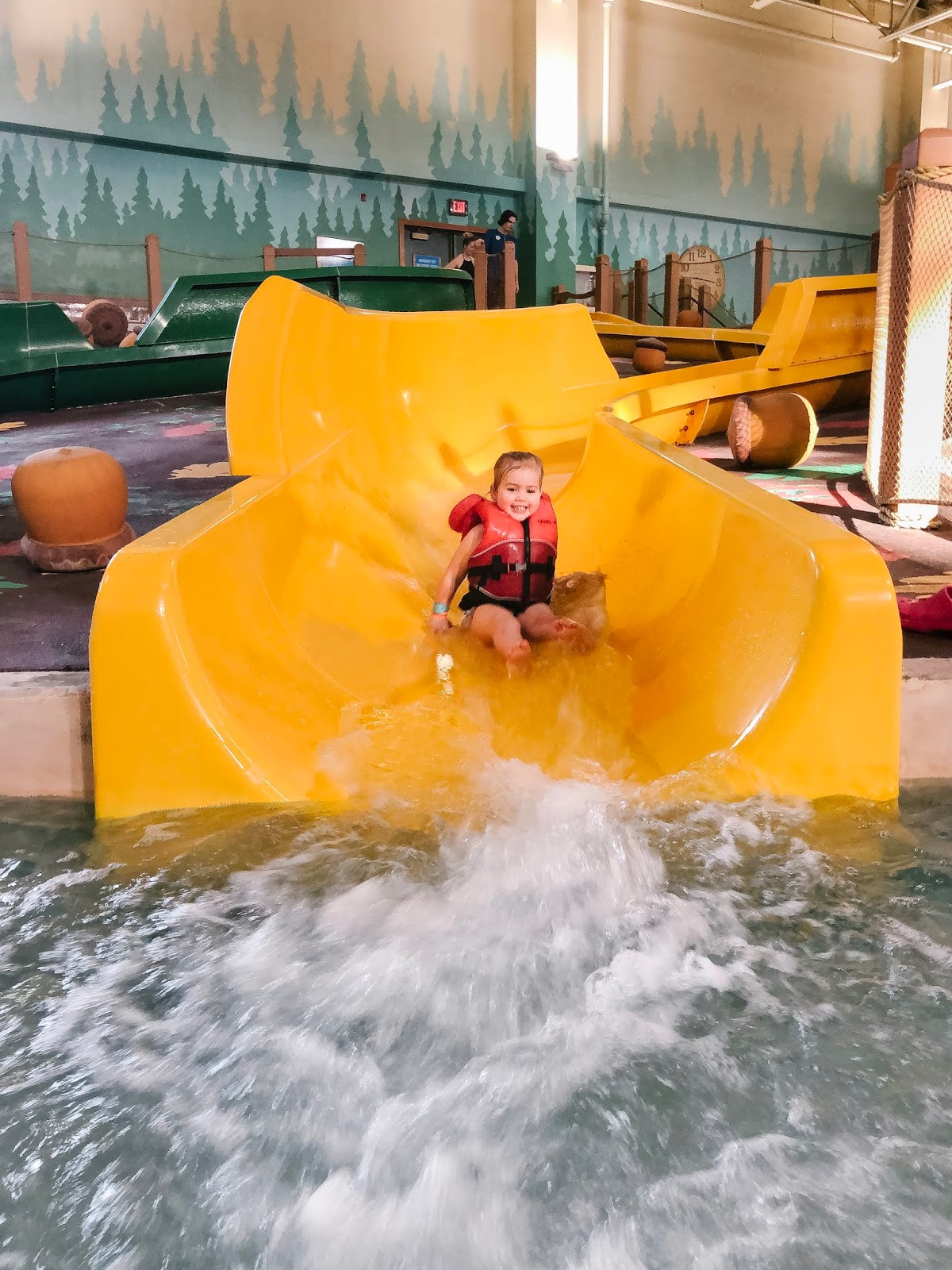 Kiddie Water slides at Great Wolf Lodge, Niagara Falls, Ontario, Canada